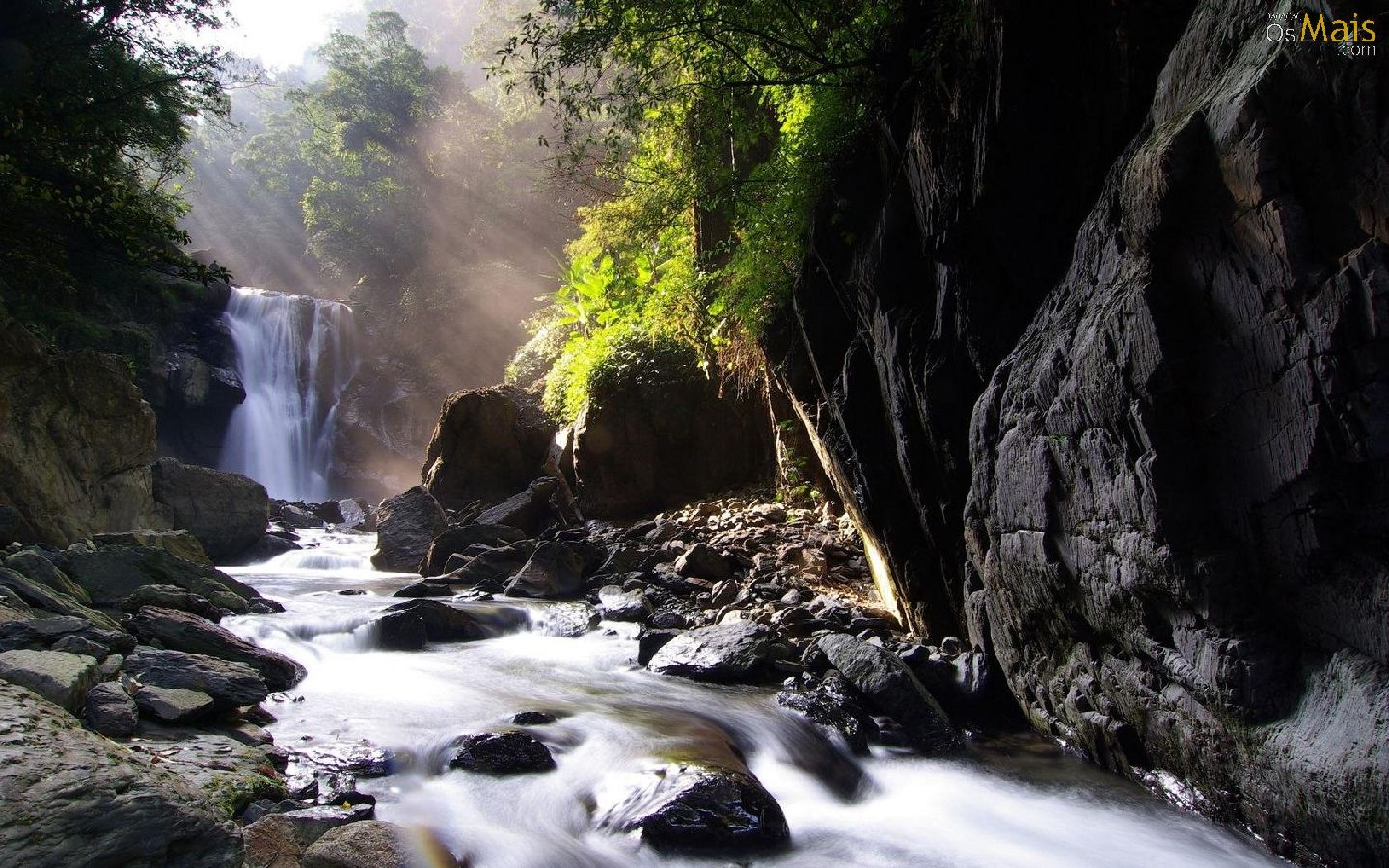 http://www.osmais.com/wallpapers/201201/cachoeira-mata-wallpaper-1440x900.jpg