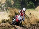 Motocross Radical wallpaper