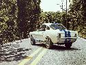 Shelby Mustang GT350-H wallpaper