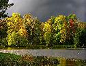 Bosque e Lago wallpaper